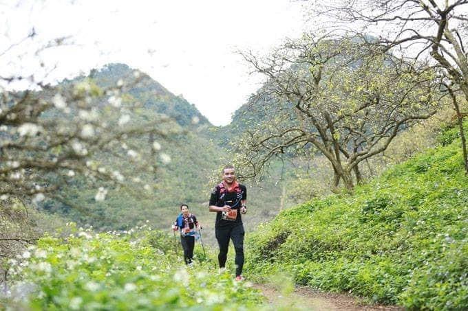 giai chay bo vietnam trail marathon
